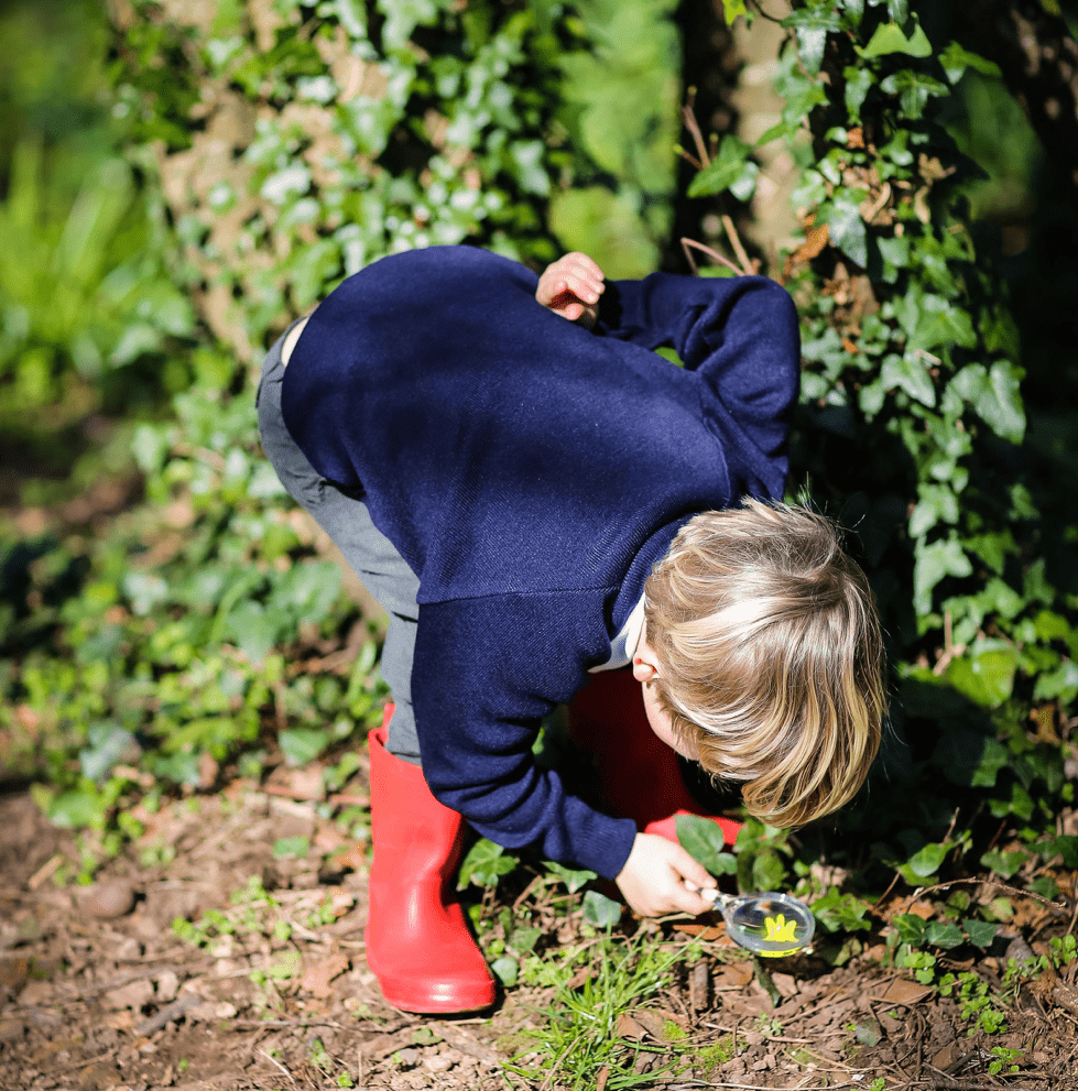 A young boy inspects flowers in Wild Woods.